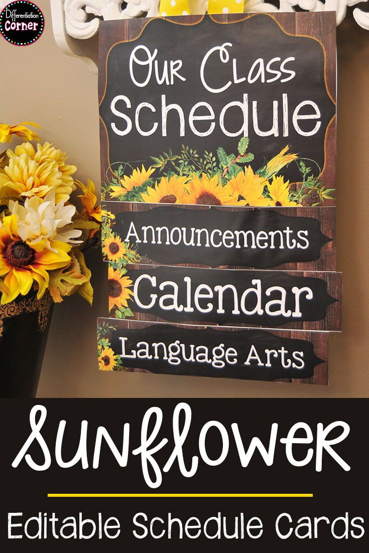 editable schedule cards includes 120 schedule cards and bulletin rh pinterest com