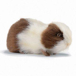Brown Guinea Pig 7.87″ by Hansa