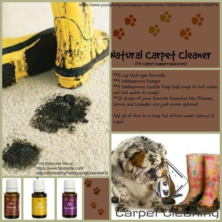 Teppichreiniger Young Living Essential Carpet Cleaner Essential Livin In 2020 Carpet Cleaners Dry Carpet Cleaning Natural Carpet Cleaners