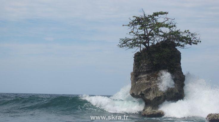 Un rocher creux percé par une vague des Caraïbes, à Puerto Viejo, Costa Rica