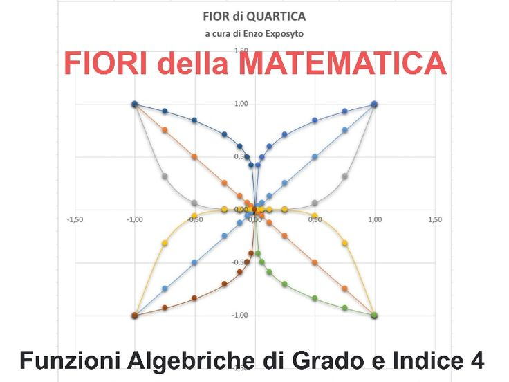 FIORI della MATEMATICA - FUNZIONI ALGEBRICHE di GRADO 4 e INDICE 4