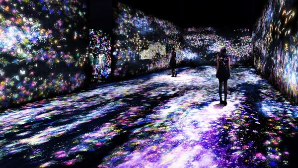 Flowers and People, Cannot be Controlled but Live Together – A Whole Year, TeamLab, 2015.. TeamLab inaugura dos nuevas exposiciones, en Londres y en Tokio | Experimenta