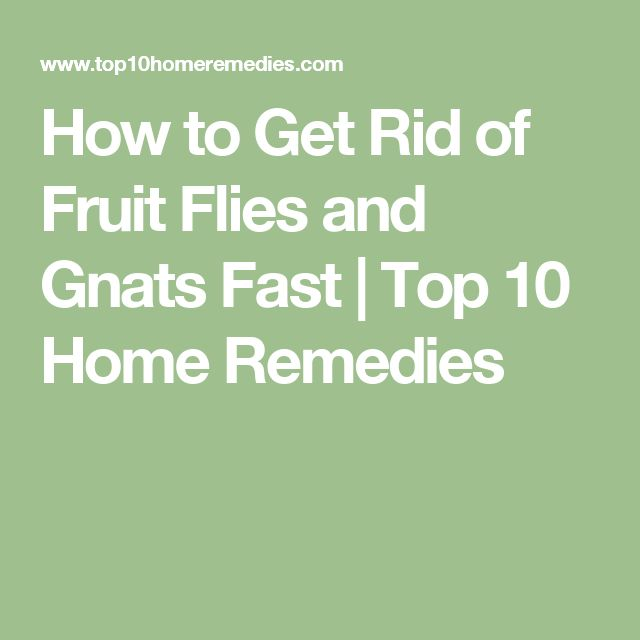 the 25 best how to get rid of gnats ideas on pinterest getting rid of gnats killing house. Black Bedroom Furniture Sets. Home Design Ideas