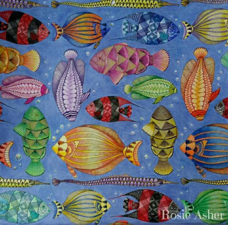 Coloring Books Colouring Animal Kingdom Color Schemes Fish Vintage Colors Colour Pisces