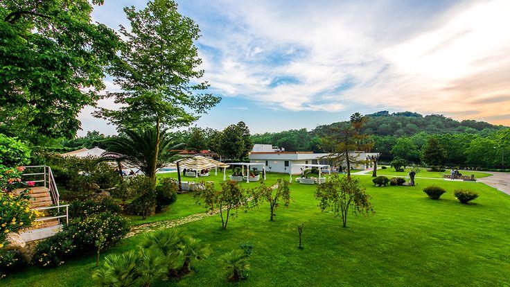 Il Parco - Il verde intenso del prato, il frondare di ulivi, noci e carrubi recuperati al silenzio originario della natura, pare che invitino alla gioia di un evento da vivere