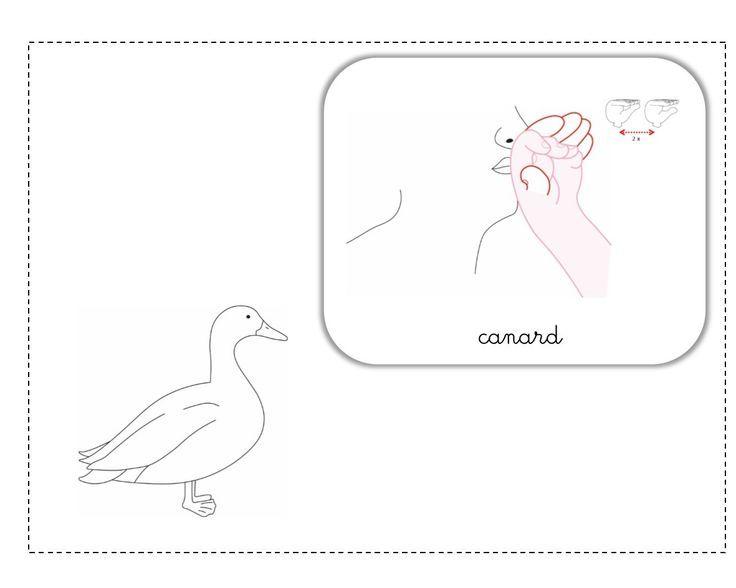 """Résultat de recherche d'images pour """"poule en lsf"""""""