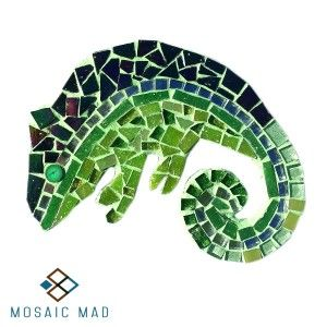 Mosaic Project- CHAMELEON R49.00