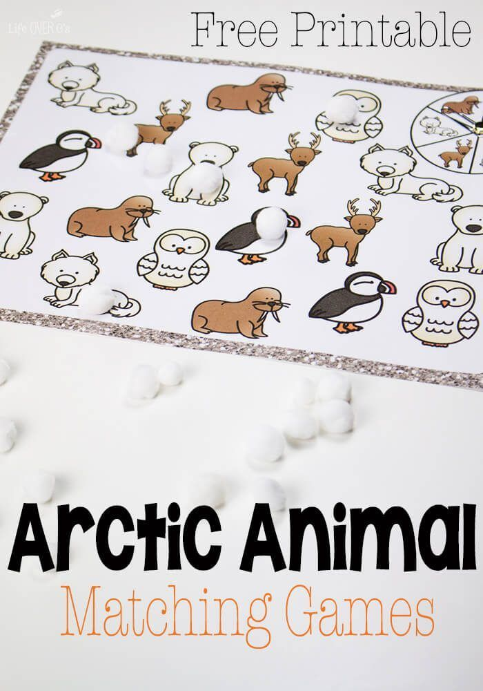 300+ best Winter and Arctic Preschool Theme images on Pinterest ...