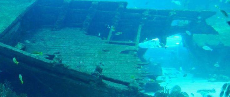 Phénomènes Inexpliqués: Triangle des Bermudes : le mystère (enfin) résolu ? - Frawsy