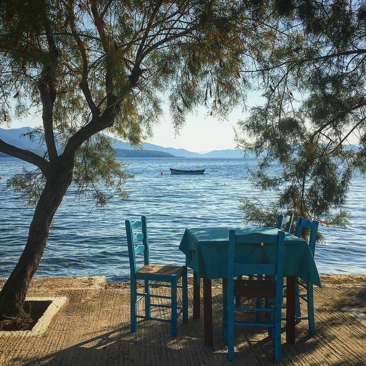#seaview#table#blue#seabreeze#tree#sihlouette#summervibes#summeraddiction#greeksummer#reasonstovisitgree#greekblue#bluesky#pagasitikos#pelion#mypelion#taverna#greekhabits#welovegreece#travel_greece#lifeisabeach#lifegoeseasyonthebeach#sunnydays#sunisshining#image#frame