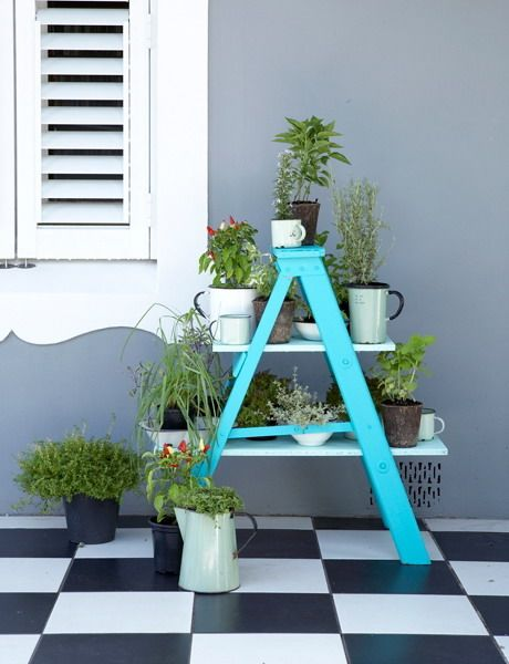 15 ideas on how to turn an old ladder into a plant stand for your garden/home.    And... its turquois  :)