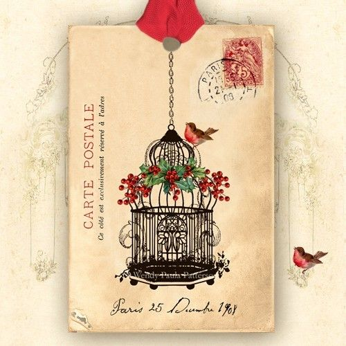 paris december 1908 carte postale bird cage art tags. Black Bedroom Furniture Sets. Home Design Ideas