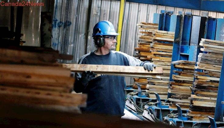 U.S. demand for Canadian softwood lumber expected to remain high