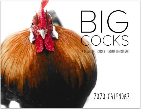 Big Cocks 2021 Rooster Funny Calendar