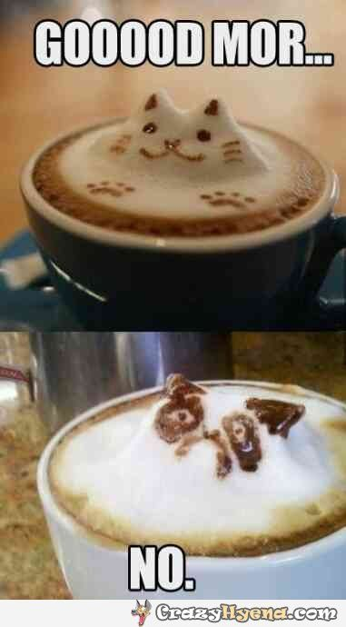 Funniest cat forms in the coffee cup.