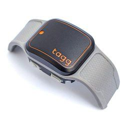 Best Dog GPS/Activity Monitor: Fitbark vs Tagg vs Whistle