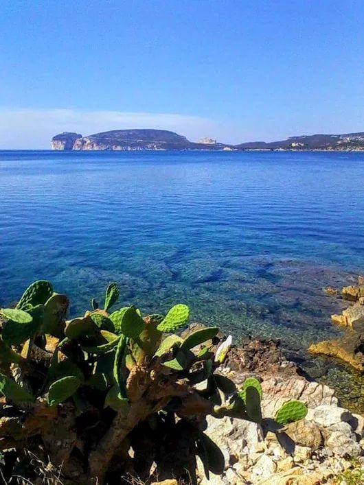 Capo Caccia ... Alghero ... foto di LIna Marone