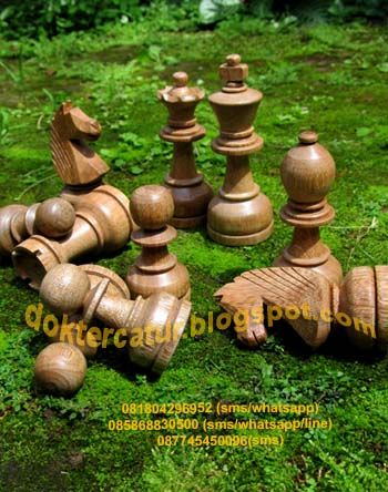 "http://doktercatur.blogspot.com wooden chess;  ""DGT van Java"" 9 type"