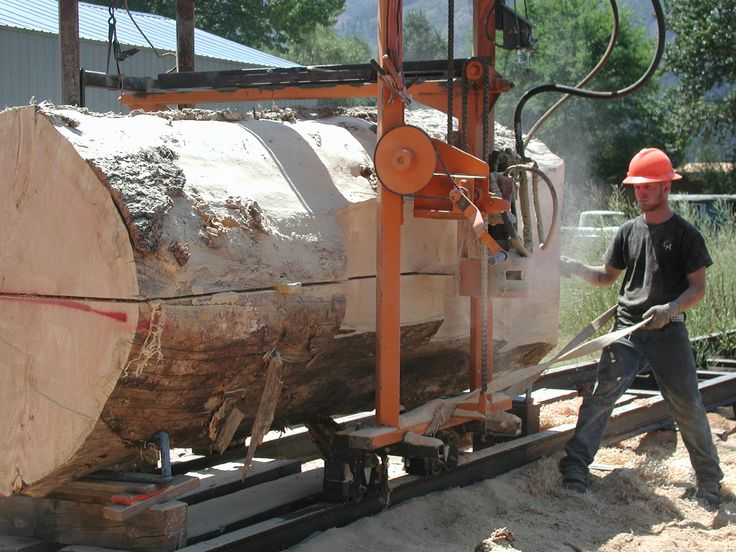 Custom cutting large Douglas Fir tree into large beams