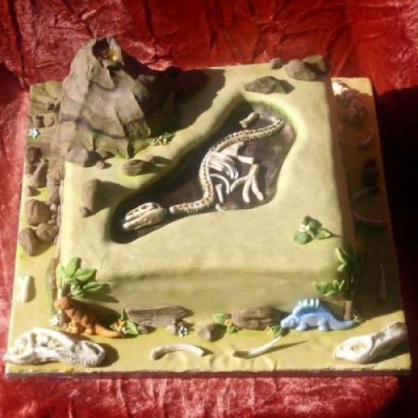 Cake - Dinosaur Fossil Cake