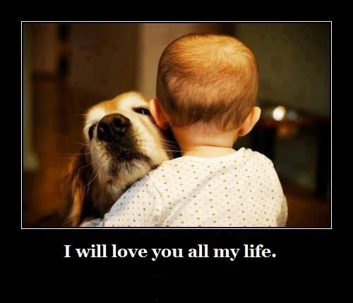 Dogs = pure love