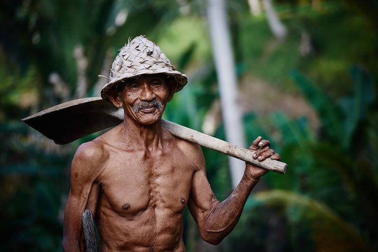"""Im asiatischen Raum istJiaogulan auch als """"Kraut der Unsterblichkeit"""" bekannt. Das Heilkrautwurde bereits um1400 in China schriftlich erwähnt und soll sich auf Stressreaktionen des Körpers besonders positiv auswirken. In derGuizhou-Region, wo extrem viele alte und auch gesunde Menschen leben, wird der Tee aus dem Unsterblichkeitskraut täglich getrunken.Das Kraut soll vor freien Radikalen schützen und ist … """"Jiaogulan: Das Kraut der Unsterblichkeit"""" weiterlesen"""
