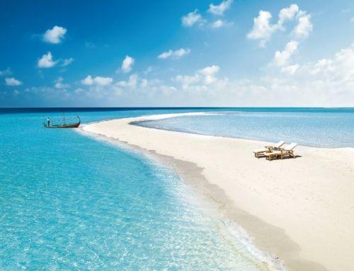 Maldives. 環礁や島をめぐるクルージングも楽しめる | ナショナルジオグラフィック日本版サイト