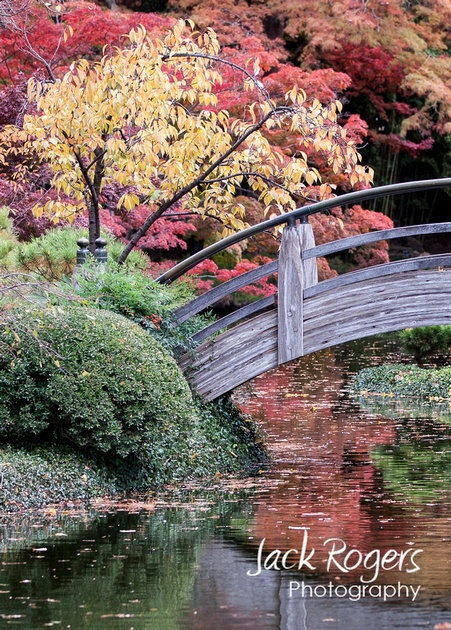 Japanese Garden Fort Worth Texas I Heart Fort Worth Pinterest Gardens Fort Worth And Forts