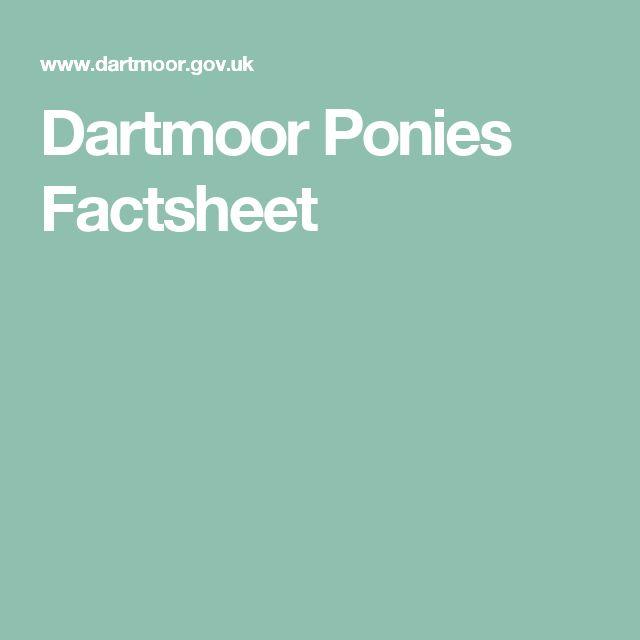 Dartmoor Ponies Factsheet