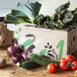 Small veg box | organic vegetable delivery from Riverford