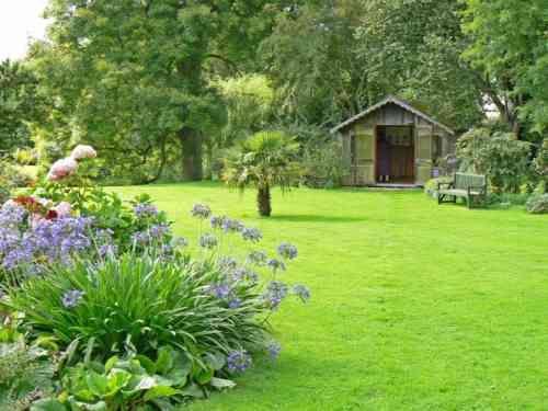 Une belle pelouse bordée de massifs avec agapanthes. Pas d'inquiétude si elle jaunit un peu en été, elle reprendre sa belle couleur verte dès les premières pluies.
