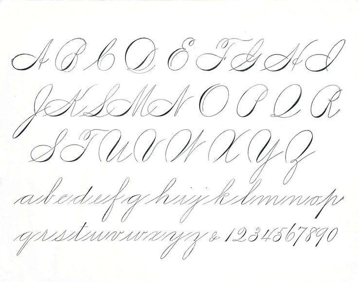 Elegant Script: Spencerian and Copperplate Roundhand