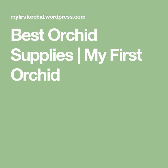 Best Orchid Supplies | My First Orchid