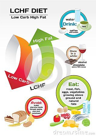 YES!!  Please try it!  I PROMISE you will be glad you did!   Diet Low Carb High Fat infographic by Elizabetalexa, via Dreamstime