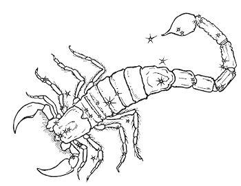 Caratteristiche del segno zodiacale Scorpione - Per Mobile