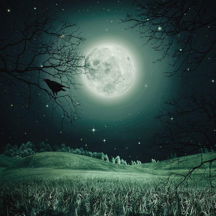 Fabuleux Les 25 meilleures idées de la catégorie Pleine lune sur Pinterest  OE21