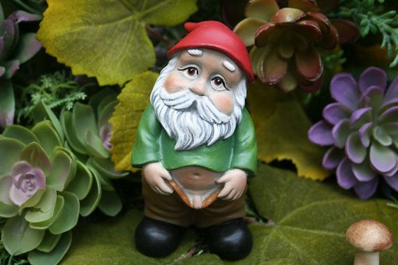 "Rude Gnome, READY TO SHIP Now, Concrete Garden Gnome with Pants Down Watering the Mushrooms - ""PeeWee"" - Funny Gnome"