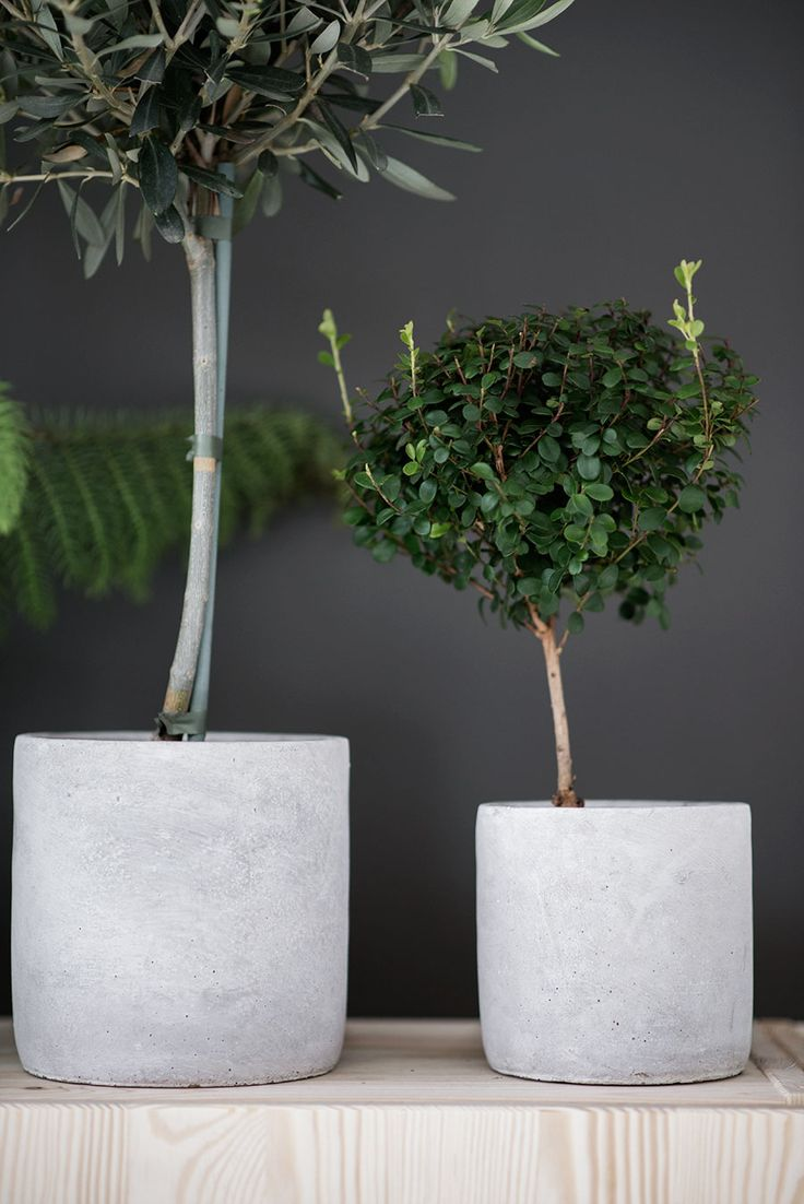 1000+ images about concrete on Pinterest