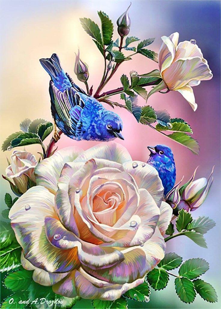 Открытки синяя птица