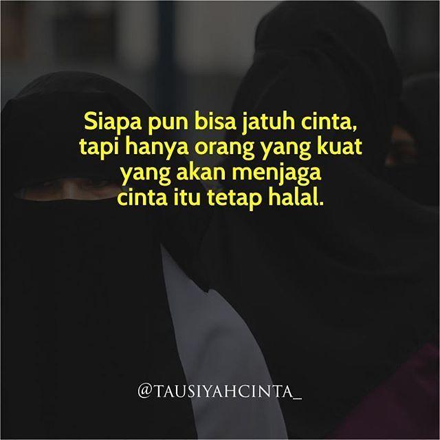 Siapa pun bisa jatuh cinta  tapi hanya orang yang kuat  yang akan menjaga  cinta itu tetap halal.  Follow @hijrahcinta_ http://ift.tt/2f12zSN