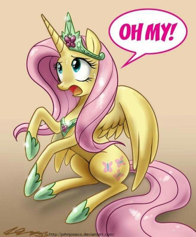 I honestly think Fluttershy would make a great princess. <3