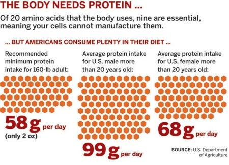 plant food combinations to make complete protein - Google Search ...