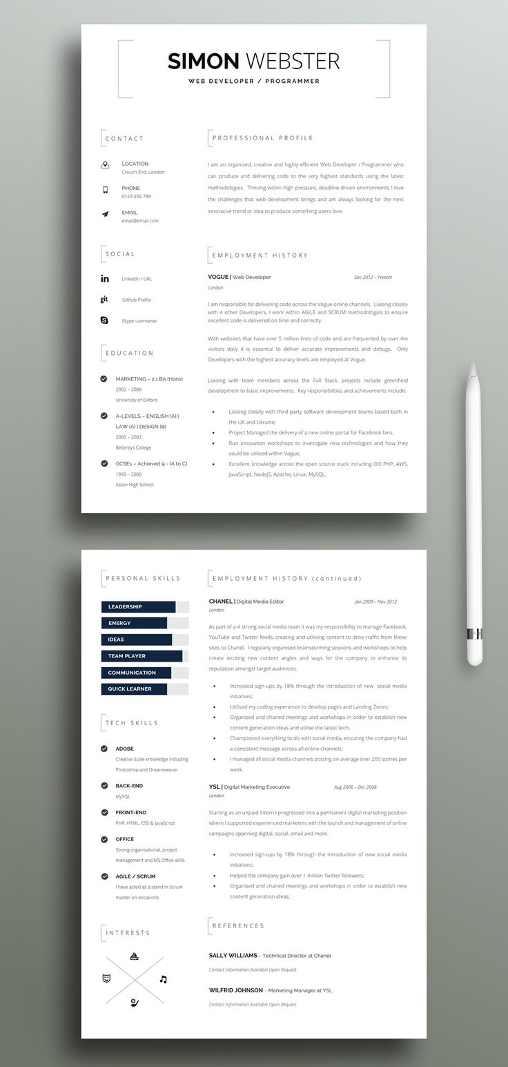 Chronological Resume Skills Resume Smart CV Template for