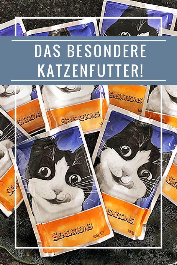 Besonderes Katzenfutter Mit Leckeren Funsauces Katzen Futter