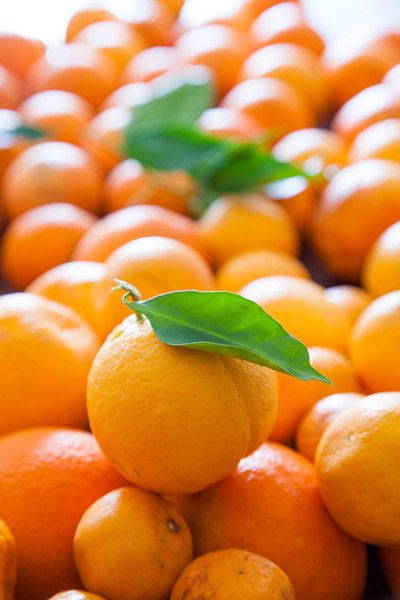 Icon of the Mediterranean diet, the orange is the star of the Spanish garden.  Originally from China, it was introduced in the Iberian Peninsula by the Arabs.  Spain is not the country that produces the most oranges, but it is the one with the richest and most beautiful coloring ones.