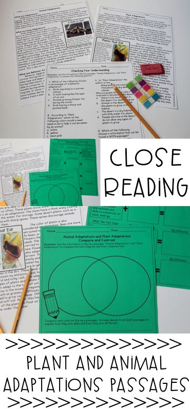 Plant and Animal Adaptations Reading Comprehension Passages and Close Reading Ideas! Great for science and reading!