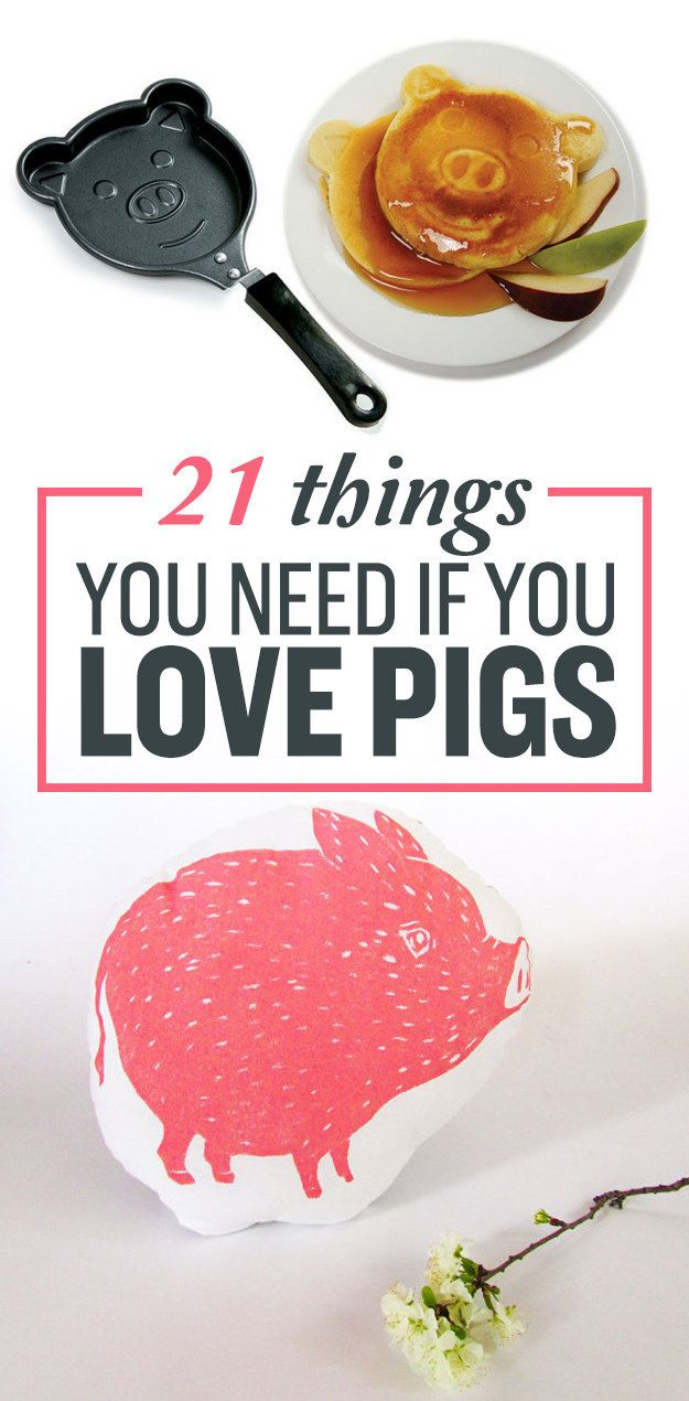 21 Adorable Things You Need If Pigs Are Your Favorite - http://www.funny-animal-pictures.org/21-adorable-things-you-need-if-pigs-are-your-favorite/