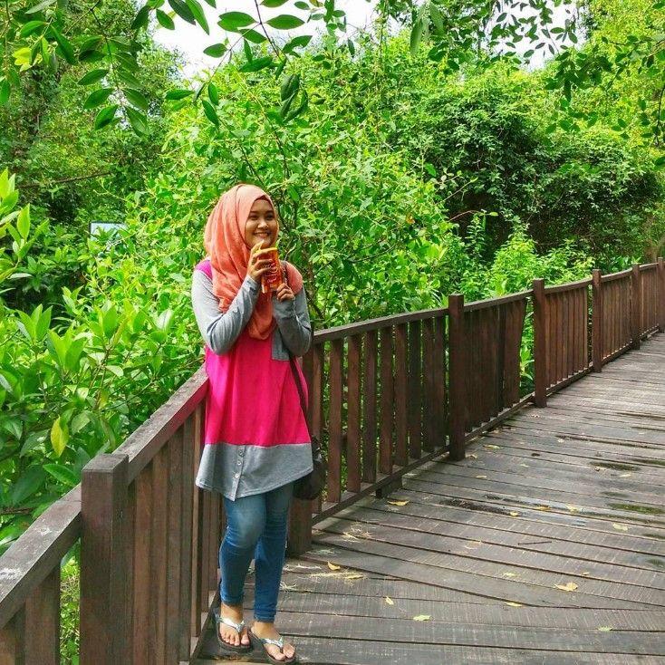 hutan mangrove wonorejo rungkut