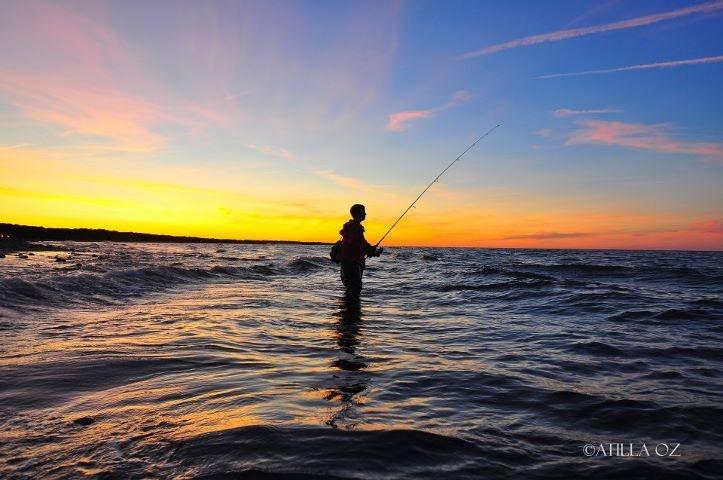 56 Best Surf Casting Images On Pinterest Fishing
