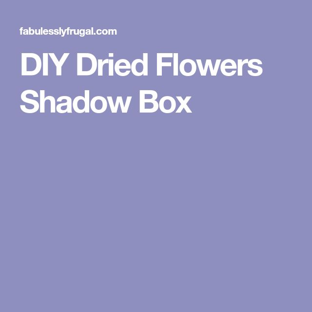 DIY Dried Flowers Shadow Box